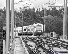 A WEB OF LIGHT RAIL - AND A LIGHT RAIL TRAIN