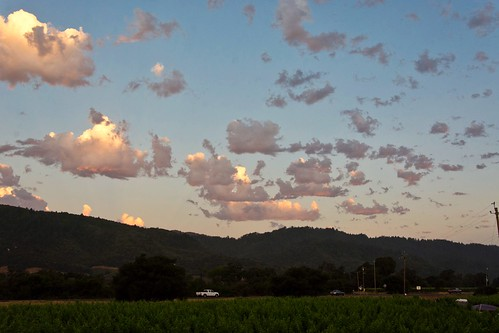 yountville napa sunrise