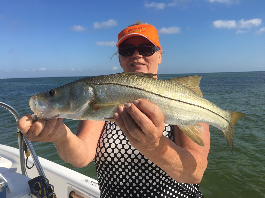 Catching Snook Tampa