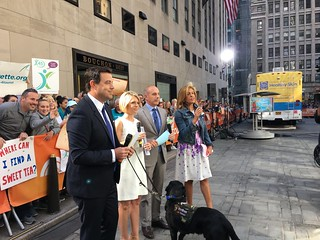 TODAY SHOW LOOPERS