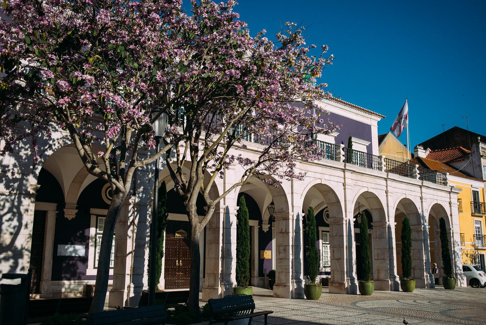Setúbal városháza (Camara Municipal)