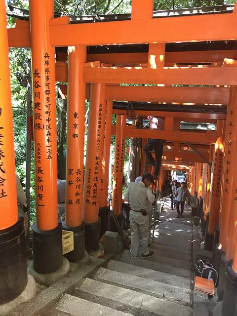 fushimiinaritaisya147