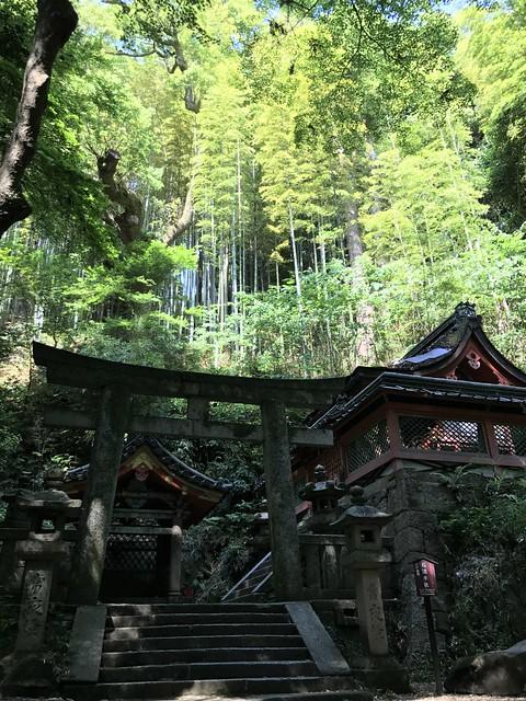 iwashimizuhatimangu145