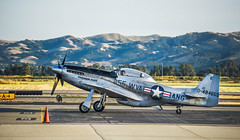 """TF-51D mustang """"toulouse nuts"""""""
