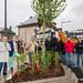 2017_05_19 Baumpflanzaktion- 110 Bäume für 110 Jahre Differdingen