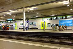 Bern-54
