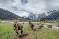 Ganzi - Manigango - Backcountry - Luoxu-3853