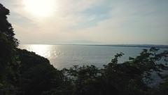 Enoshima Sea Water Horizon Over Water Nature Outdoors Cloud - Sky Landscape Tree Scenics Sky Island
