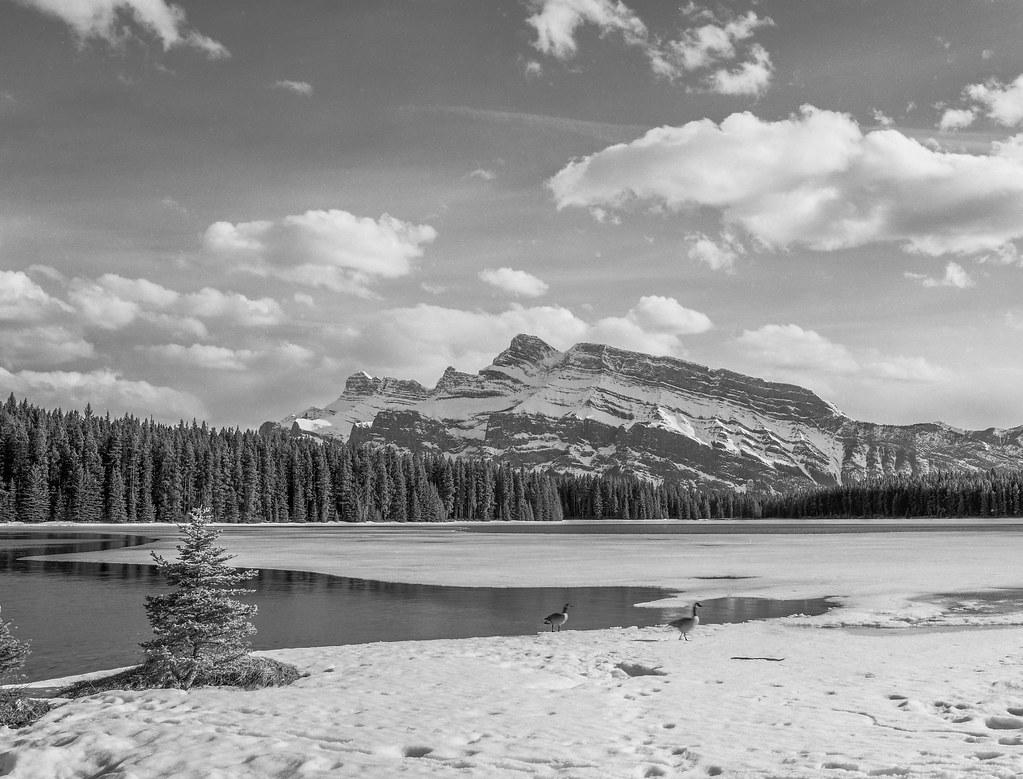 April in Banff