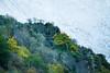 aguas cardenas otoño2012-4