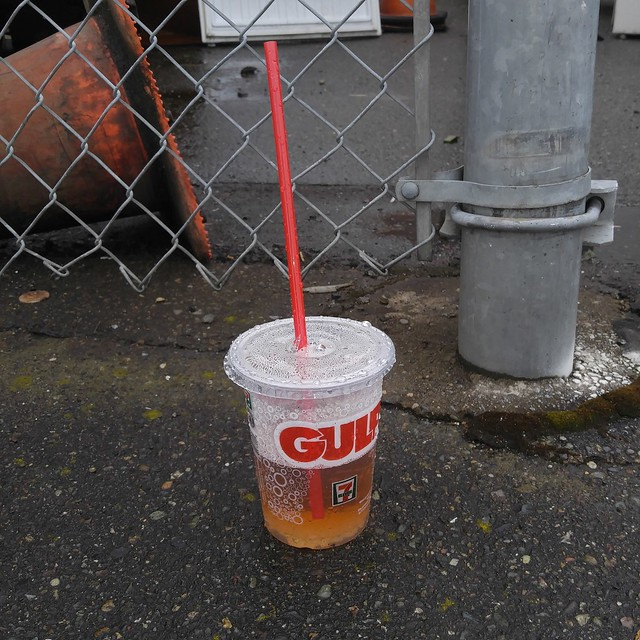 Do not drink from the free Small Gulp
