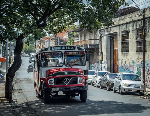 bus transportation fahrzeug vehicle paraguay asunción baum tree street strase