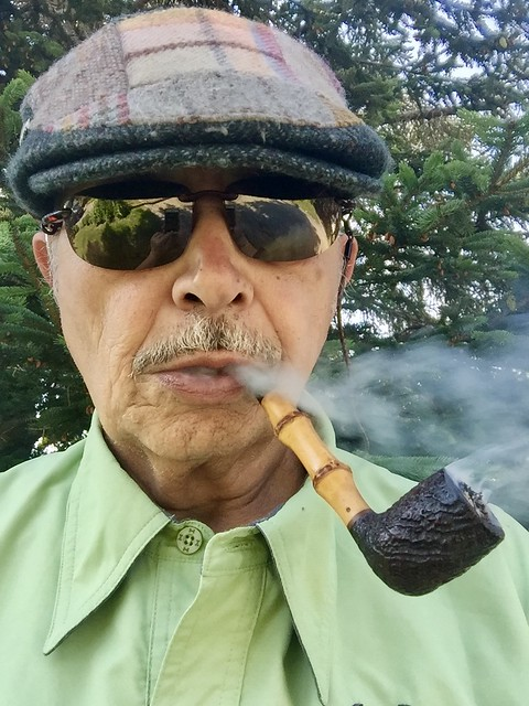 Dunhill and bamboo  35267860505_4902290e20_z_d