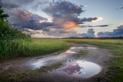 canoneos5dmarkiv sunset street road gravel rockroad atardecer puddle reflections wet poststorm field campo clouds michigan midmichigan midland canon