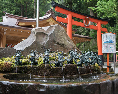 Nine dragons at Hakone Jinja