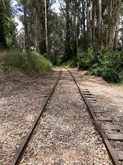 Disused rails in Capitola
