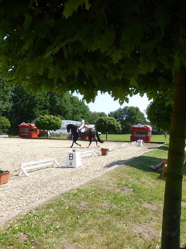 Turnier Ahrensburg-Ahrensfelde 2014