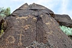petroglyph, Petroglyph National Monument