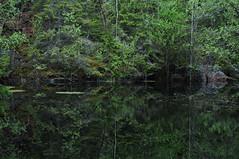 Vattenfyllt gruvhål, Väddö, 20170605