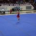 2017 Summer Games - Gymnastics