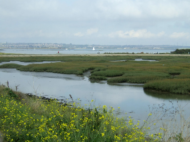 The Medway in Rainham