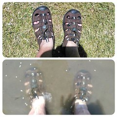 Christening the new sandals in the murky Willamette. It's funny, I went through a few decades of not wearing them, mostly due to being forced to wear them as a kid. But they are nice for hot summer days like today. Especially sport sandals, since I can ju