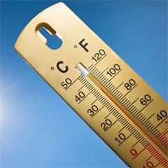 Emergenza caldo estivo