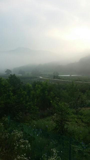 아침풍경 : 상선약수