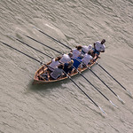 Rowers on the Tiber