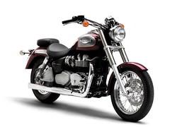 Triumph 800 BONNEVILLE AMERICA 2001 - 15