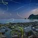 Firefly Flying on the Beach - at Izu-Peninsula West-Coast