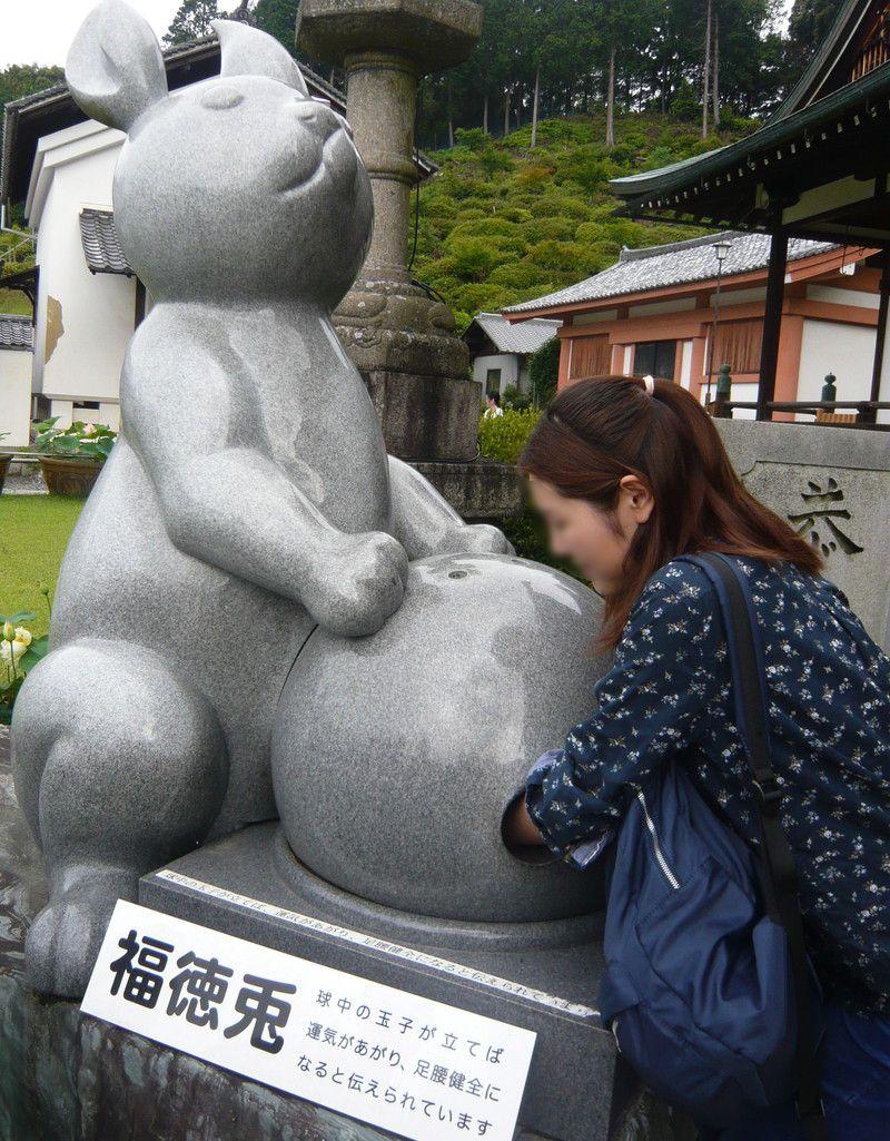 三室戸寺の福兎