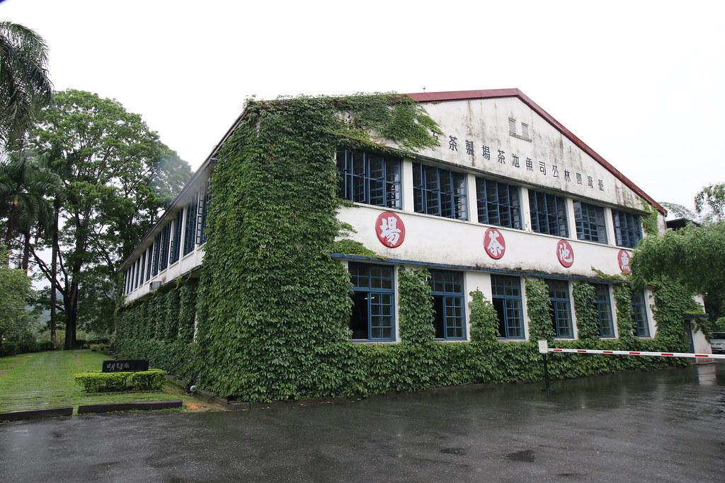 日月老茶廠 (15)