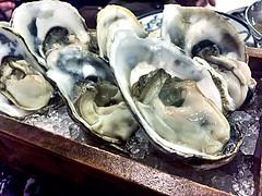 Fresh Oysters?