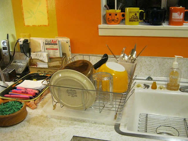 Dishes-2026, Canon POWERSHOT A490