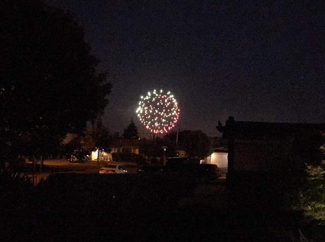 Fireworks at Almaden Lake