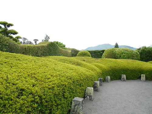 jp-chiran-jardin6 (2)