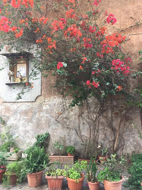 Around Trastevere