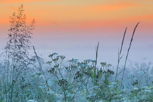 mist, ochtendrood