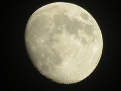 Wednesday, July 5th, Moon shot. Moon Night Planetary Moon Astronomy Moon Surface Circle Beauty In Nature Nature Low Angle View No People Tranquility Outdoors Space Exploration Close-up Sky Scenics Clear Sky Space Half Moon Justgphotors EyeEm Selects Satel