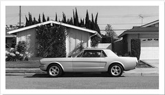 The First Mustang Just as a Simple Shape