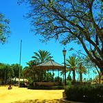 Teléfono del Ayuntamiento de Los Palacios Y Villafranca