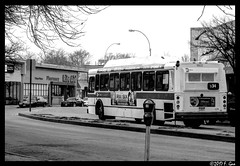 NYCT - Q34 Bus - Flushing, New York, NY.