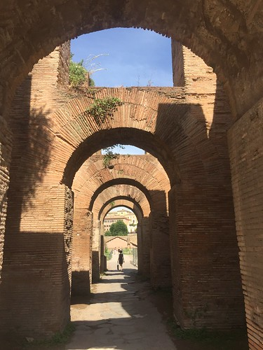 In the Roman Forum