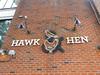 Hawk & Hen