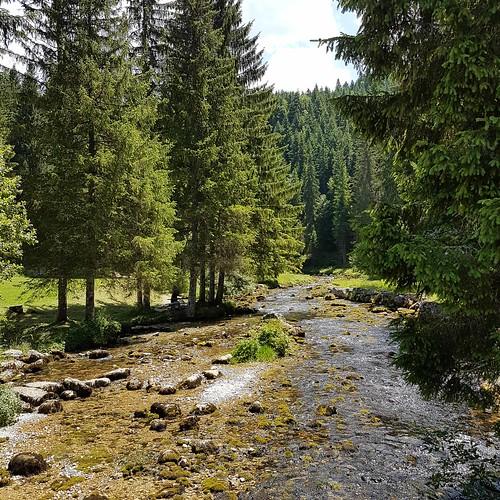 Doubs (8) Quelle 20170705_133948