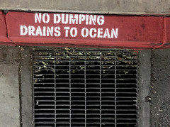 No Dumping Drains to Ocean
