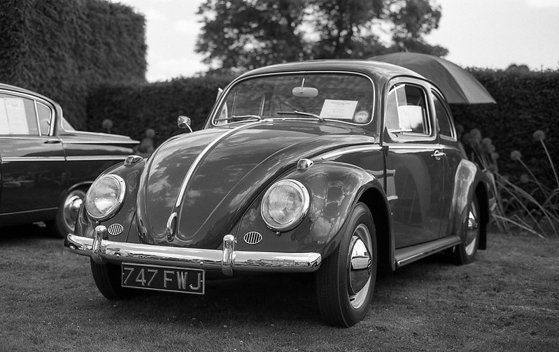 FILM - Beetle