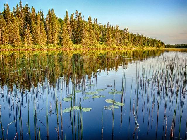 Miller's Pond, Sony DSC-W150