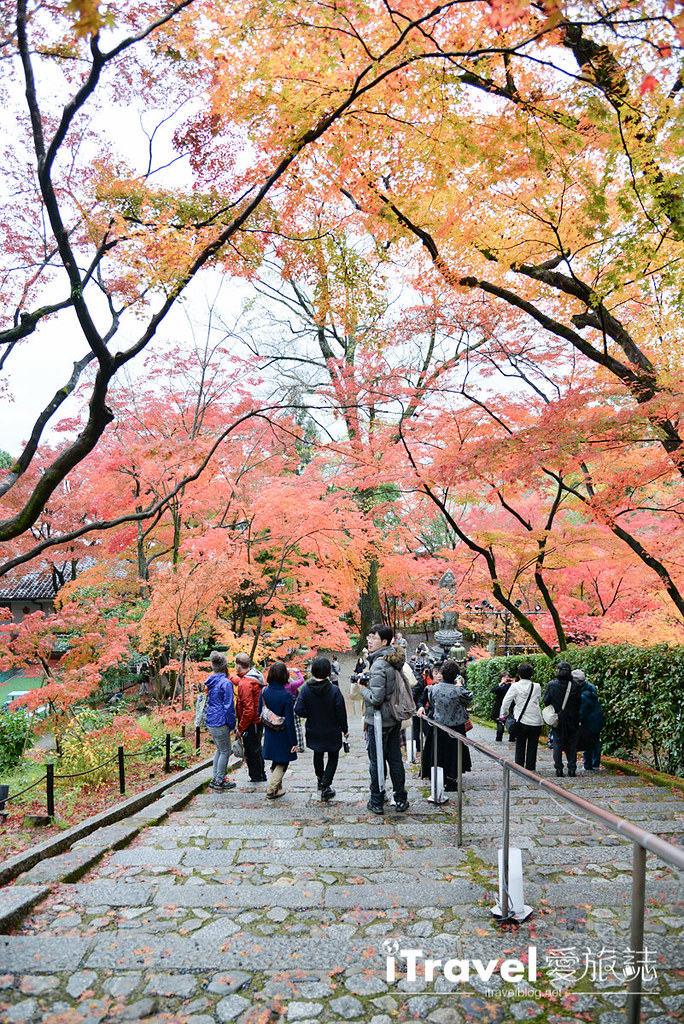 京都赏枫景点 永观堂 (39)